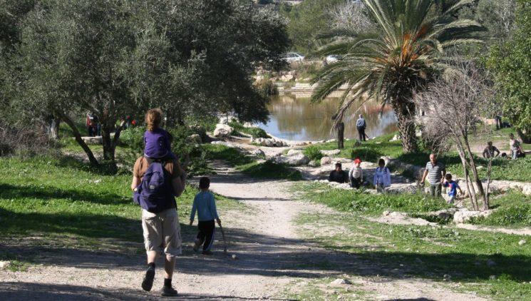 Israelis gehen im Park Canada in der Nähe der Tel Aviv-Jerusalem-Autobahn spazieren. Foto Anna Kaplan/FLASH90