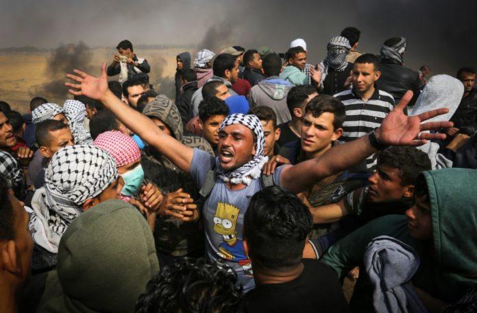 Foto Abed Rahim Khatib/Flash90