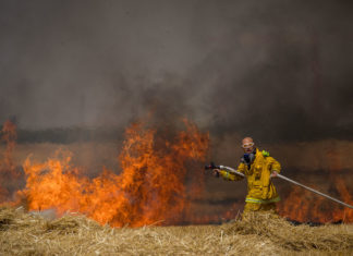 Israelische Feuerwehrleute löschen ein Feuer in einem Weizenfeld, das von Drachen verursacht wurde, die von palästinensischen Demonstranten ausgeflogen wurden, nahe der Grenze zum Gazastreifen, 30. Mai 2018. Foto Yonatan Sindel/Flash90