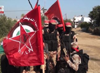 """Militante"" der DFLP. Foto Screenshot Youtube"