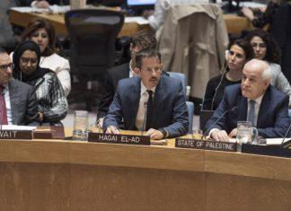 Hagai El-Ad, Direktor von B'Tselem, spricht vor dem Sicherheitsrat. Foto U.N. Photo/Rick Bajornas.