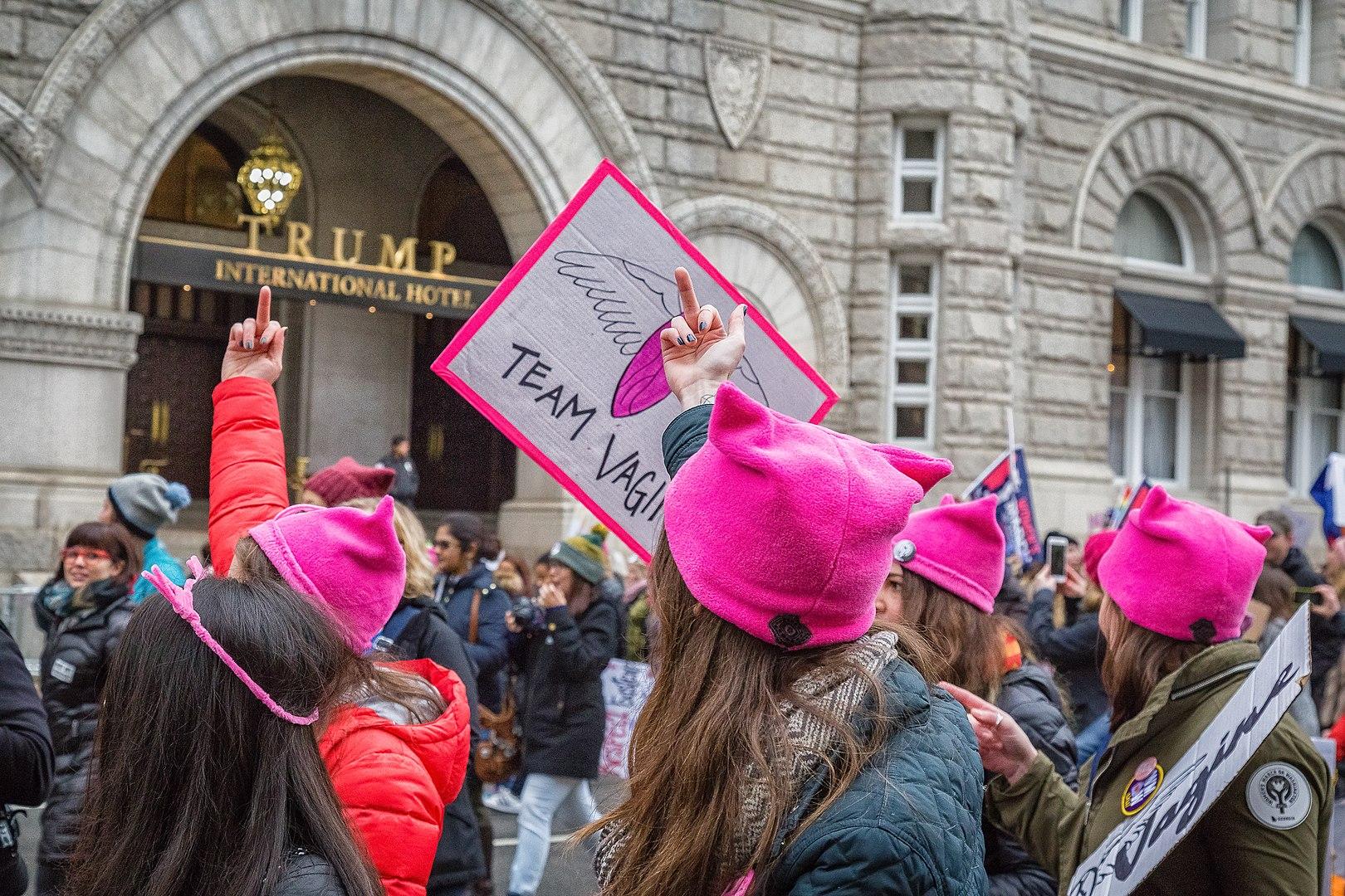 Während iranische Feministinnen, die sich weigern, den Hidschab zu tragen, tapfer sind, haben ihre westlichen Kolleginnen, die rosa Mützen tragen, sie elendig im Stich gelassen.  Foto By Mobilus In Mobili - Women's March on WDC, CC BY-SA 2.0, https://commons.wikimedia.org/w/index.php?curid=55796973
