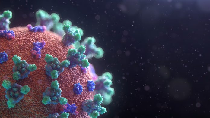 Foto Fusion Medical Animation on Unsplash