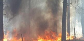 Ein Feuer in der Nähe von Nof Hagalil im Norden Israels, 9. Oktober 2020. Foto Stadtrat Nof Hagalil.