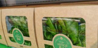 Die israelische Firma VerticalField ist spezialisiert auf vertikale Gemüse Anbauanlagen und beliefert unter anderem Supermarktketten. Foto VerticalField verticalfield.com