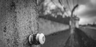 Sachsenhausen im Bundesland Brandenburg, Mahn- und Gedenkstätte Sachsenhausen, ehemaliges Konzentrationslager. Foto IMAGO / Jürgen Ritter