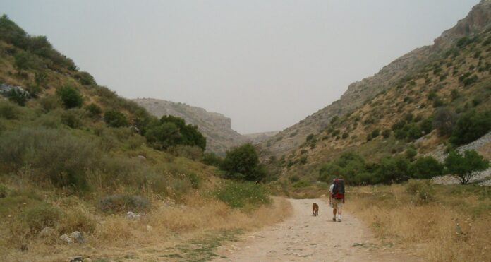 Wanderung auf dem Israel National Trail, Wadi Dishon in Nordisrael. Foto Diana Barshaw - Transferred from en.wikipedia to Commons by Hike395 using CommonsHelper., Public Domain, https://commons.wikimedia.org/w/index.php?curid=10209494