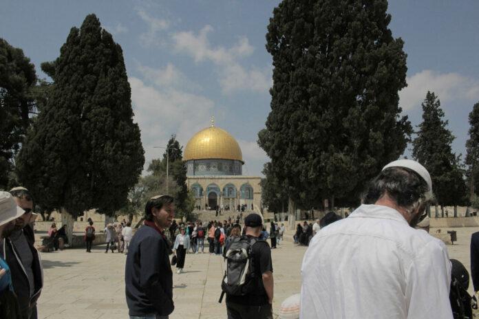 Juden auf dem Tempelberg. Foto Netanel Krakover/TPS